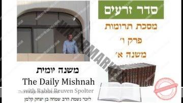 Terumot Chapter 6 Mishnah 1
