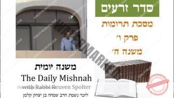 Terumot Chapter 6 Mishnah 5