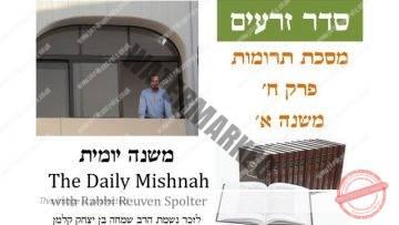 Terumot Chapter 8 Mishnah 1