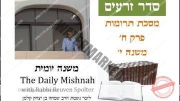 Terumot Chapter 8 Mishnah 10