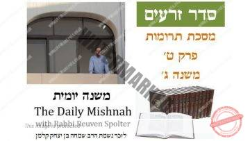 Terumot Chapter 9 Mishnah 3