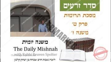 Terumot Chapter 9 Mishnah 7