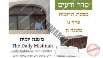 Terumot Mishnah 3 Chapter 8