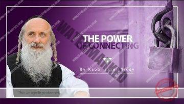 The Power of Connecting | Rabbi Lazer Brody