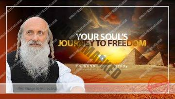 Your soul's journey to freedom