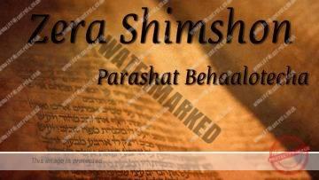 Zera Shimshon – Parashat Behaalotecha – Rabbi Alon Anava