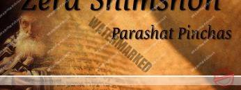 Zera Shimshon – Parashat Pinchas – Your status after true Teshuvah – Rabbi Alon Anava