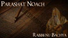 Rabbenu Bachya | Parashat Noach – Why bother building an ark? – Rabbi Alon Anava