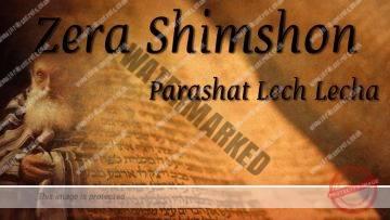 Zera Shimshon | Parashat Lech Lecha – Gather the sparks – Rabbi Alon Anava